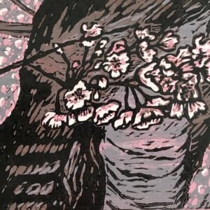 "Cherry Blossoms – 14"" x 16"" woodblock print © Joanne Brown"